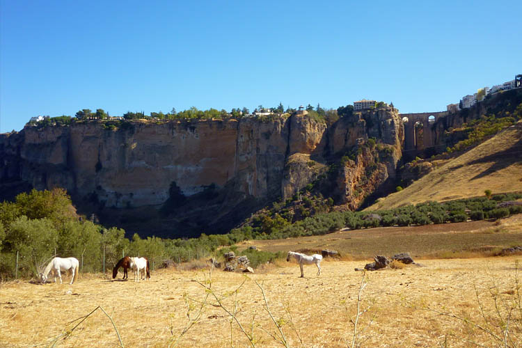 The cliffs of Ronda with bridge across the gorge - El Tajo (The Pit)