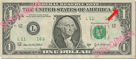 Spider on the Dollar Bill