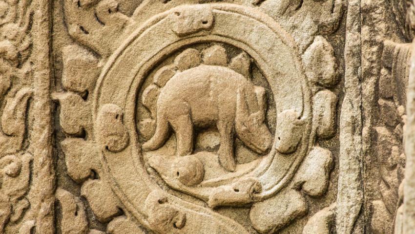 Cambodian Stegasaurus