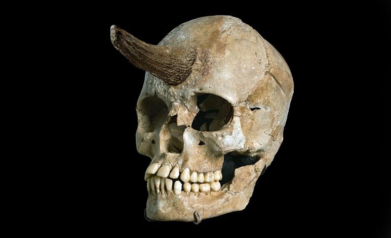 Weird Skull with Horn